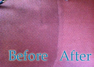 Home Carpet Cleaning Fylde