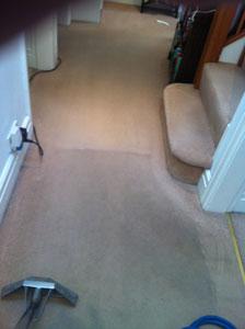 Carpet Cleaner Pilling