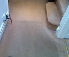 Carpet Cleaners Pilling