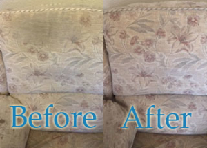 Professional Upholstery Cleaner Garstang