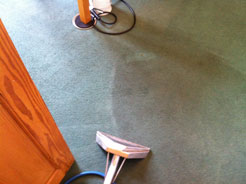 Our Guide to Cleaning Carpets – Read More Here