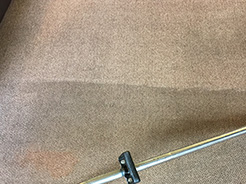 Carpet Cleaner Preston