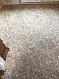 Carpet Cleaning Poulton Le Fylde